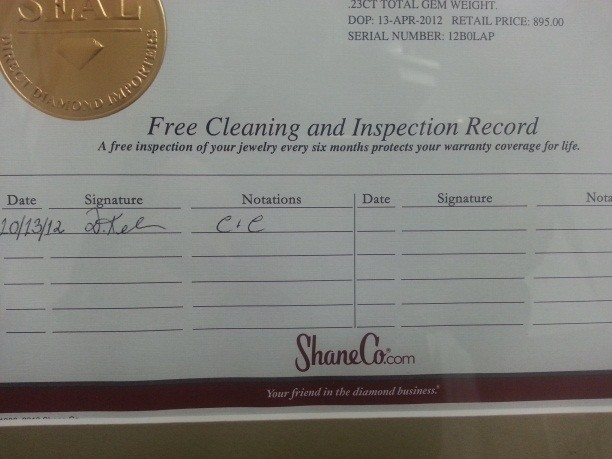 Cleaning and inspection record